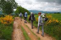 COMPOSTELLE : Du pèlerinage au chemin moderne