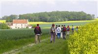 HISTOIRE : La naissance de la randonnée